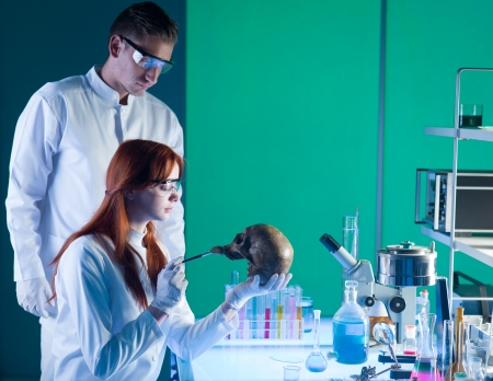 skulls: two young caucasian scientist studying an old human skull in a laboratory