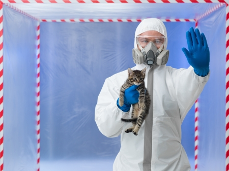 savant: close-up of male scientist wearing protection equipment, holding little cat, with stop gesture, in chamber surounded with red and white tape Stock Photo