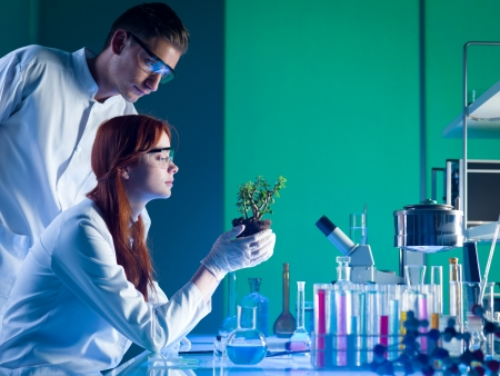 side view of biochemists studying a young green plant in a laboratory