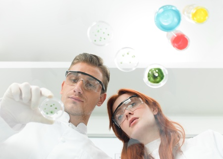 front view of caucasian scientists observing petri dish in a laboratory photo