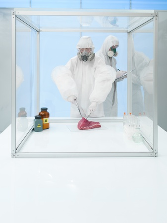perishable: scientist wearing a protective suit and gas mask experimenting on a chunk of raw meat in a sterile chamber with assistant next to him