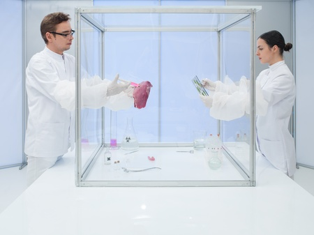 protective suit: two scientists in the lab, a man and a woman, analyzing a chunk of raw meat and biological cultures in a sterile chamber Stock Photo