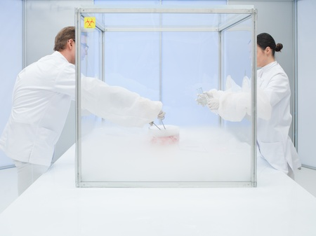 specimen testing: two scientists in the lab, a man and a woman, experimenting on a chunk of raw with liquid nitrogen in a sterile chamber
