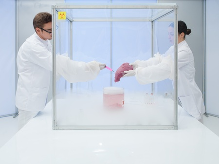 specimen testing: two scientists in the lab, a man and a woman, experimenting with liquid nitrogen and a chunk of raw meat in a sterile chamber