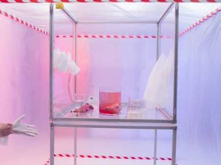 containment: sterile chamber in containment tent with experiment glassware filled with transparent colorless liquid substances and raw meat Stock Photo