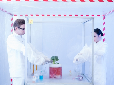 containment: two scientists in a containment tent, a man and a woman, experimenting on a piece of vegetable with liquid colored substances in a sterile chamber Stock Photo