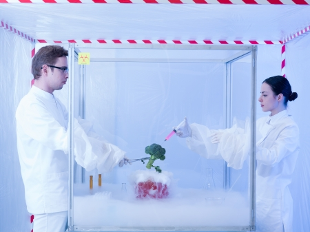 containment: two scientists in a containment tent, a man and a woman, experimenting with liquid nitrogen and a piece of vegetable by injecting it with pink liquid substance in a sterile chamber Stock Photo