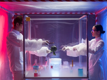 containment: two scientists, a man and a woman, the man pouring a chemical substance on a piece of vegetable in a protection enclosure, in a containment tent Stock Photo