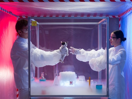 containment: two scientists, a man and a woman, conducting experiments with a live kitten in a protection enclosure labeled as bio hazardous, over a beaker filled with vapors, in a containment tent