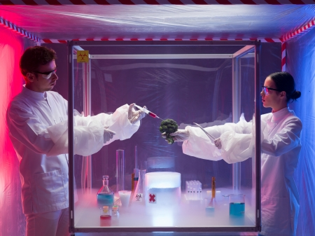 containment: two scientists, a man and a woman, conducting chemical experiments on a piece of vegetable in a protective enclosure, in a containment tent