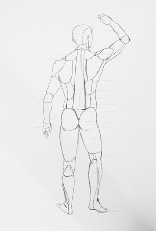 Detail of human back body pencil drawing on white paper Stock Photo - 23653534