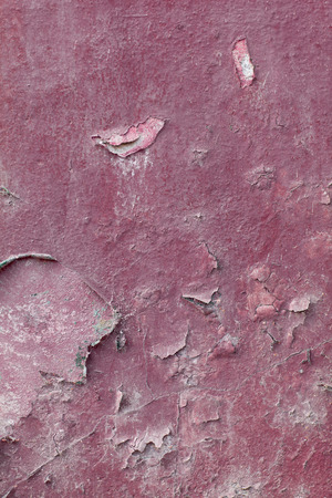 old wall texture pink and exfoliated photo