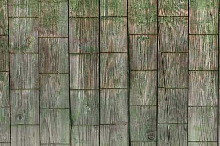 Old wooden fence with peeling green paint photo