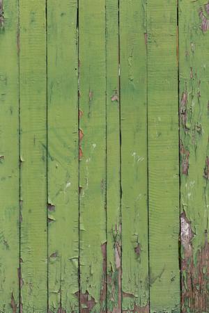 green door: Old wooden fence with peeling green paint