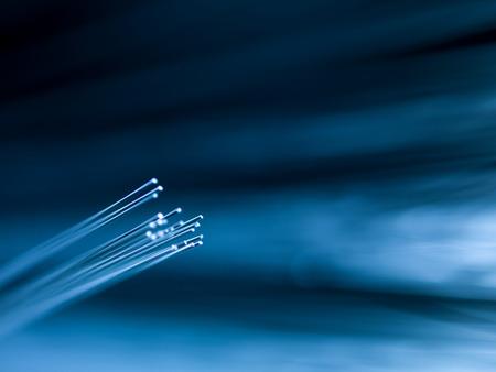 optic fiber: macro of bright blue fiber optics on defocused background