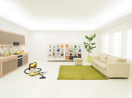 room service: clean modern living room with vacuum cleaner