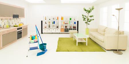 sirvienta: artículos de limpieza en limpio moderna sala de estar