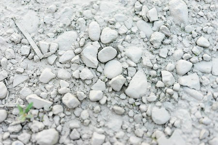 the residue: entire image of ground covered in pebbles and a layer of very fine grey dust or ash looking residue and a small plant sprouting on the edge of the image