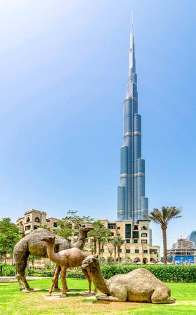 Abu Dhabi, United Arab Emirates - April 13, 2015: Camel Statues in Dubai with Burj Khalifa skyscraper in background, United Arab Emirates.