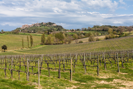 montepulciano: little town montepulciano in tuscany region Italy