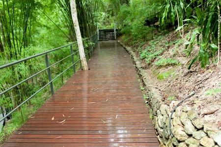 cheated: Wood bridge