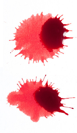 Splattered blood stains on a white background photo
