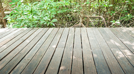 Wooden bridge for walking and nature study. Stock Photo