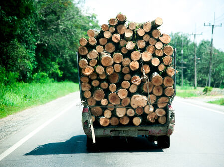 logging truck: Long logging truck Stock Photo