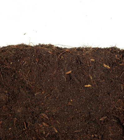 clod: Soil background Stock Photo