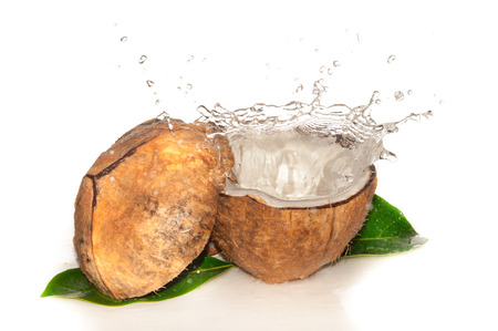 Coconut with water splash over white photo