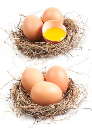 chicken egg: Chicken eggs in the nest of straw. Stock Photo