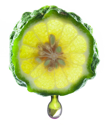 Kaffir Lime and drop on white background photo