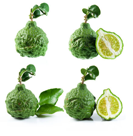 Bergamot and kaffir lime leaves on white background photo