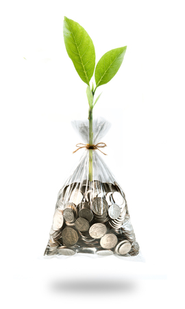 accumulate: plant and coins in plastic bags on white background, investment and business concepts