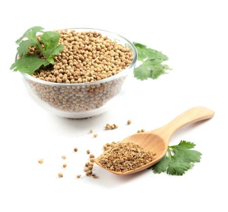 semilla: Las hojas de cilantro y semillas en frascos y en blanco Foto de archivo