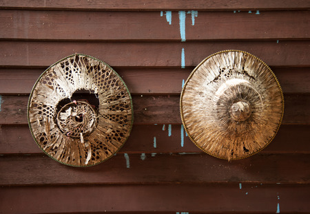 non la: Old Asian conical hats on a wooden wall
