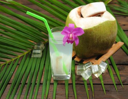 木の新鮮なココナッツ水を飲む 写真素材