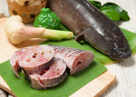 giant snakehead: fish meat and Giant snakehead fish with spices