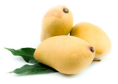 mango: Żółty mango samodzielnie na białym tle