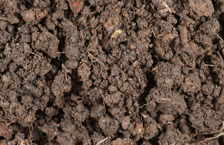soil: Peat soil texture background Stock Photo