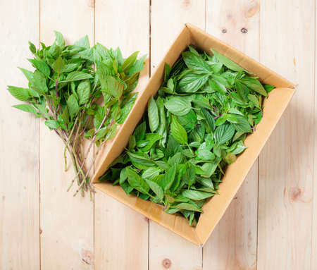 herbs boxes: Fresh organic basilic leaves on a wooden
