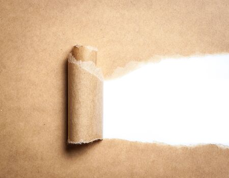 rips: Blank torn brown paper with space for text on white background,copy space Stock Photo