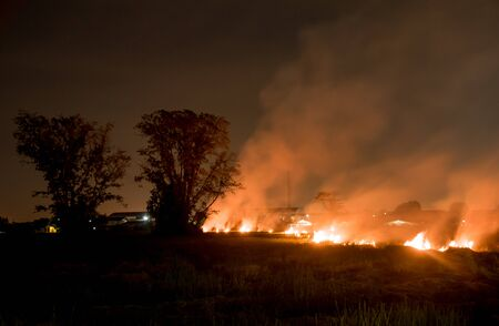 wildfire: Forest fire burning, Wildfire at night.