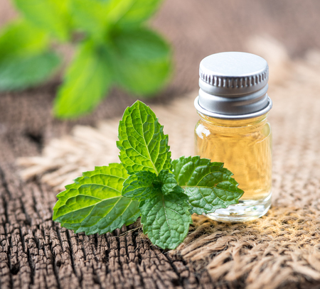 fresh mint essential oil on wood background