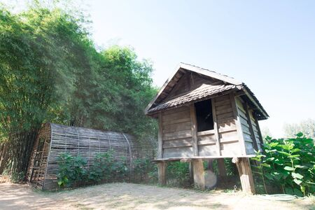 asian house plants: Small hut with tropical green in thailand