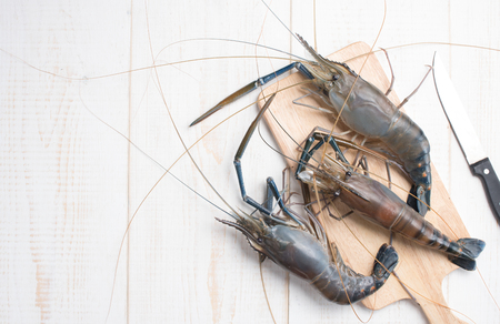 rosenbergii: Giant river prawn on wood , top view