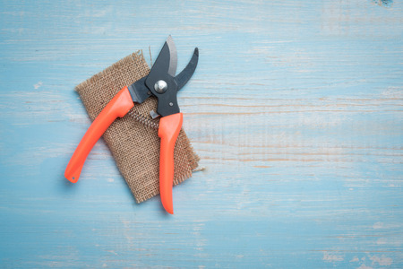 Pruning Shears on wooden table Stock Photo