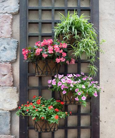 kleurrijke bloempotten die aan een muur hangen Stockfoto