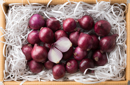 Fresh whole purple onions in the box for packing product