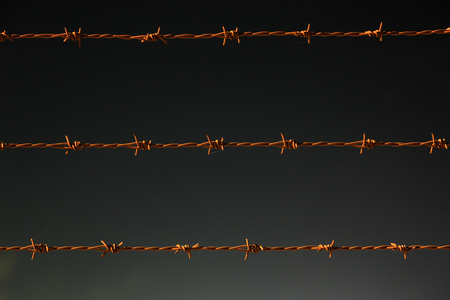 smuggling: Barbed wire of the night